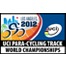 UCI Para-Cycling Track World Championships 2012