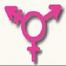 Transgender Discussion