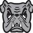 adrianbulldogshockey