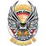 Alessondra's OKC Great Horned Owl-Cam