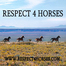 Respect4Horses