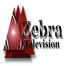 Zebra TV Test