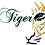 The Power Hit Mix with DJ Tiger Mix