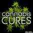 Cannabis Oil Cures Cancert