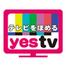テレビをほめるYESTV Ustream裏配信