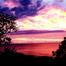 Turtle Bay - East