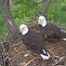 Eagles4Kids PTZ cam