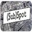 (Sub)spot
