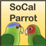SoCal Parrot