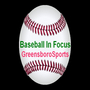 Baseball In Focus