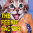The Feeko Factor