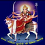 Shreeji Infotech (Girish Patel,1-773-964-2300 )