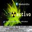 Radio Activo ORT 2013