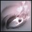 Divine Vision Media Pro