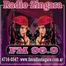 Fm Radio Zingara