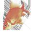 Runroom's Fishbowl Week