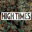 High Times - Seattle Cannabis Cup Awards - 9/8/13
