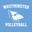 Westminster College (Mo.) Volleyball