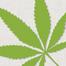 cannabisrael