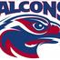 Falcons916