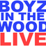 Boyz In The Wood - LIVE