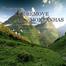 programa a fe remove montanhas
