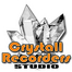 Crystall Recorders