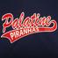 Palatine Piranhas Softball U8 2014