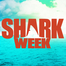 Shark Week: Reef Shark Cam