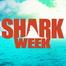 Shark Week:  Mega Shark #1