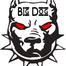 Big Dog Story