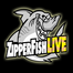 Zipperfish LIVE #153