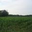 Silo View