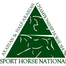 2729 Arabian Sport Horse Stallions In-Hand Hunter Type 3 & Over ATH CH SF/F