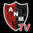 Newell Mérida TV