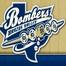 Brazos Valley Bombers Baseball