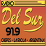 Radio del Sur 91.9
