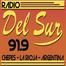 Radio del Sur 91.9
