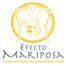 Efecto Mariposa con Aurora Medina