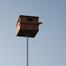 The Owl Box 3 Buddy Fluffy