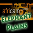Africam - Elephant Plains