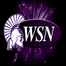 Winona State Warrior Athletics