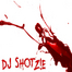 shotz!e_dj