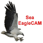 eaglecam2u