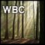 WBC Gathered Worship