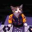 RnB/Soul/HipHop/Lounge/House/Trance