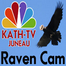 KATH-TV Raven Cam