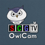 SCGTV OwlCam