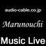三菱電線工業 Marunouchi Music Live