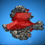 Fine Mineral Specimens for Sale